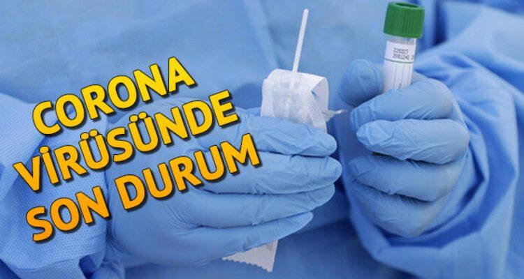 Türkiye'de Son Durum: 2.433 Hasta, 59 Ölüm